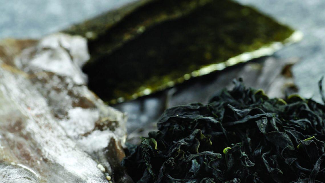 מרק מיסו עם אצות ופטריות. צילום: דניה ויינר |ייעוץ: דפנה בוסאני