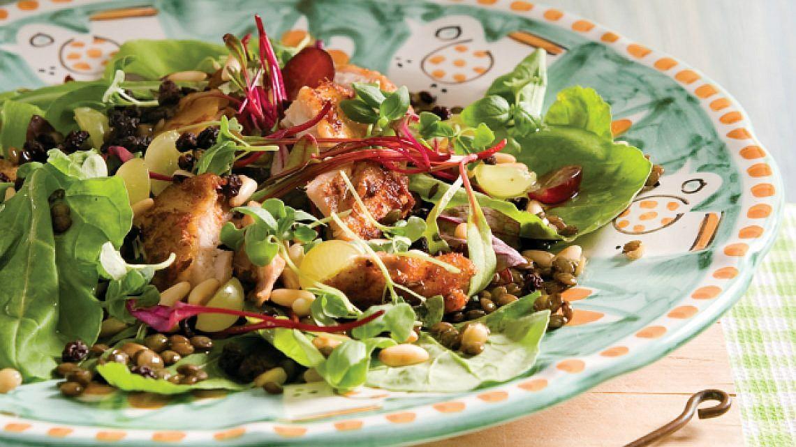 סלט נתחי עוף, עדשים, ענבים וצימוקי אוכמניות. צילום: אילן נחום | סגנון: טליה גון אסיף
