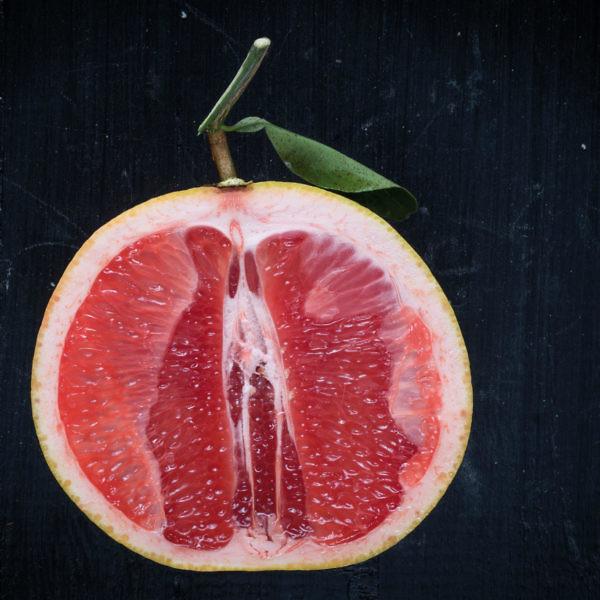 אשכולית אדומה. צילום: אנטולי מיכאלו