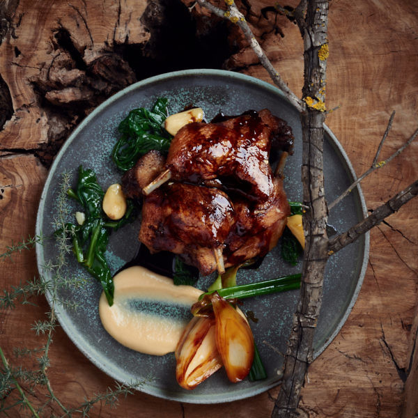 קונפי שוקי ברווז עם קרם שורשים של השף חיים טיבי. צילום: בן יוסטר