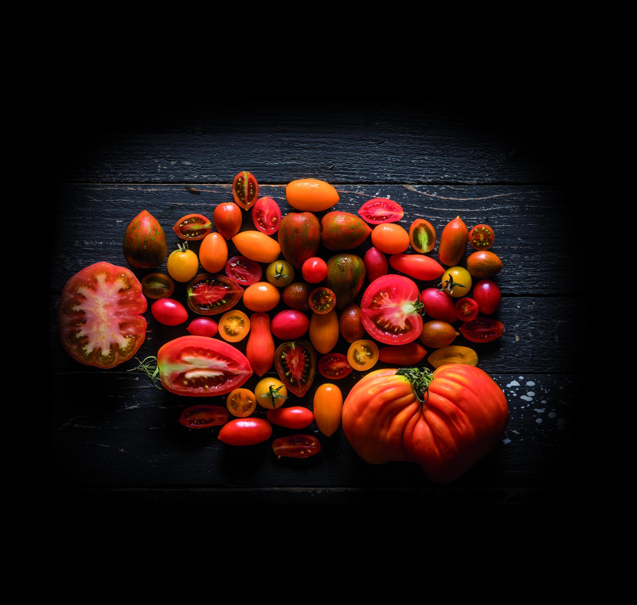 שינוי תודעה זנים של עגבניות. צילום: אנטולי מיכאלו