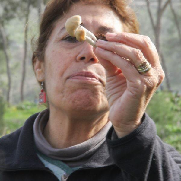 """אוהבת פטריות. ד""""ר דליה לוינסון. צילום: ענבל ענברי מלמד"""