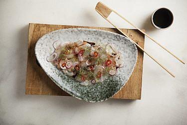 סשימי דניס בפונזו בצלים, צנוניות וצ'ילי של מסעדת גוצ'ה. צילום: אפיק גבאי