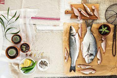 דגים, בני רבה. צילום: שרית גופן. סטיילינג: אינה גוטמן