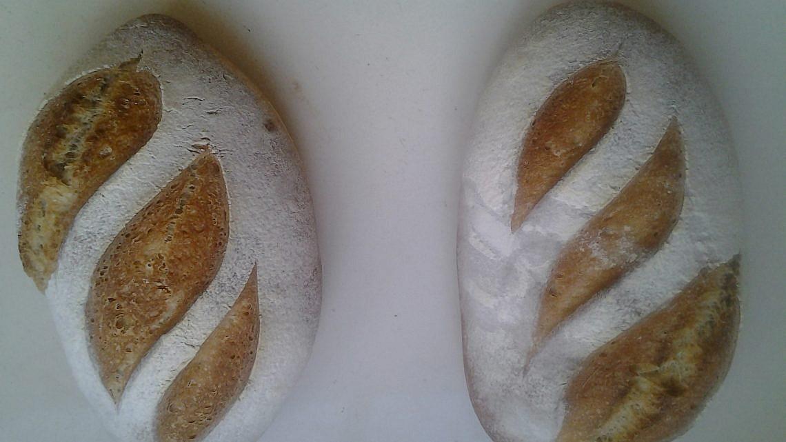 מתכון ראשון ללחם מחמצת של ברי יוגב. צילום: ברי יוגב