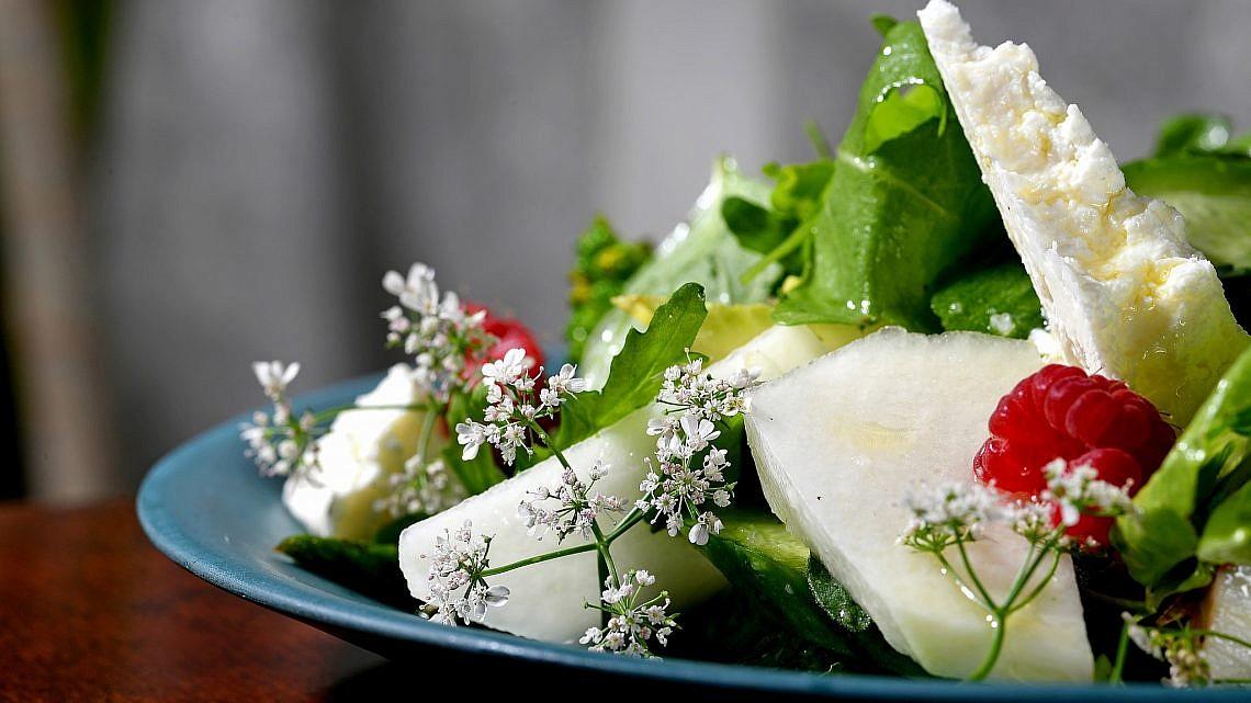 סלט קיץ ירוק של שף מושיקו גמליאלי. צילום: רן בירן