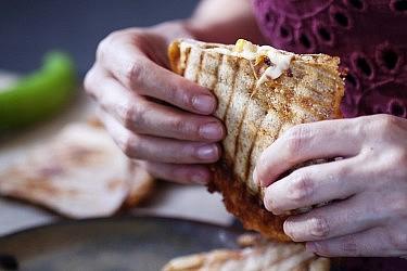 קסדייה גבינות עם רוטב שעועית ומולה. צילום: דניאל לילה