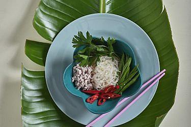 יאם וואן סן גאי - סלט אטריות קרות, עוף ועשבים של התאילנדית בהר סיני. צילום: אנטולי מיכאלו. סטיילינג: דינה אוסטרובסקי וירדן יעקובי