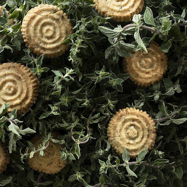 עוגיות זעתר מתוקות של נוף עתאמנה אסמעיל. צילום: דניאל לילה