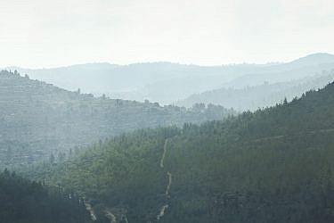 הרי יהודה. צילום: דן פרץ