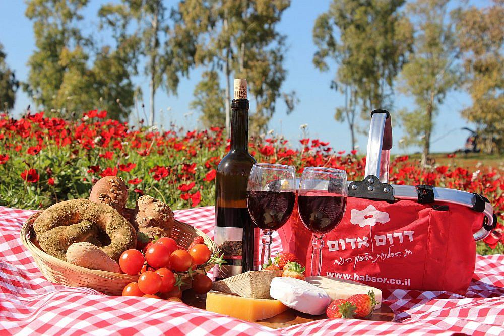 מוצרים ארטיזנליים ותוצרת חקלאית מקומית פסטיבל דרום אדום. צילום: לבנת גינזבורג