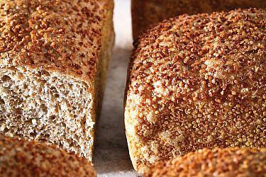 לחם קינואה קל של אורי שפט. צילום: דן פרץ. סטיילינג: עמית פרבר