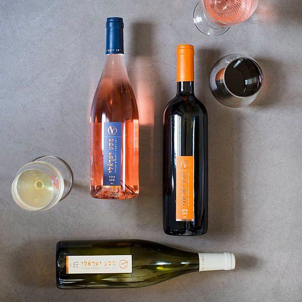 שותים ותורמים מארזי יין של ויתקין. צילום: גלי איתן