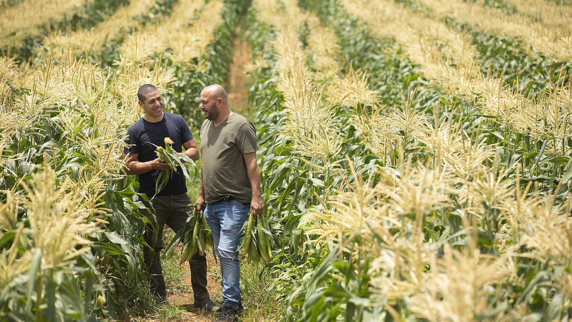 שף יוסי שטרית והחקלאי בני נקווה, החקלאי והשף. צילום: דניאל לילה