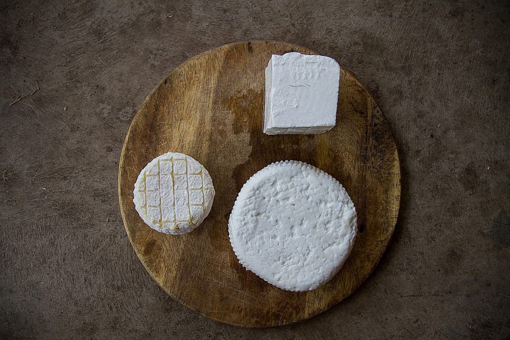 גבינות שהן תוצר של מערכת יחסים עז הבר, צפרירים (צילום: מאיי תדהר)