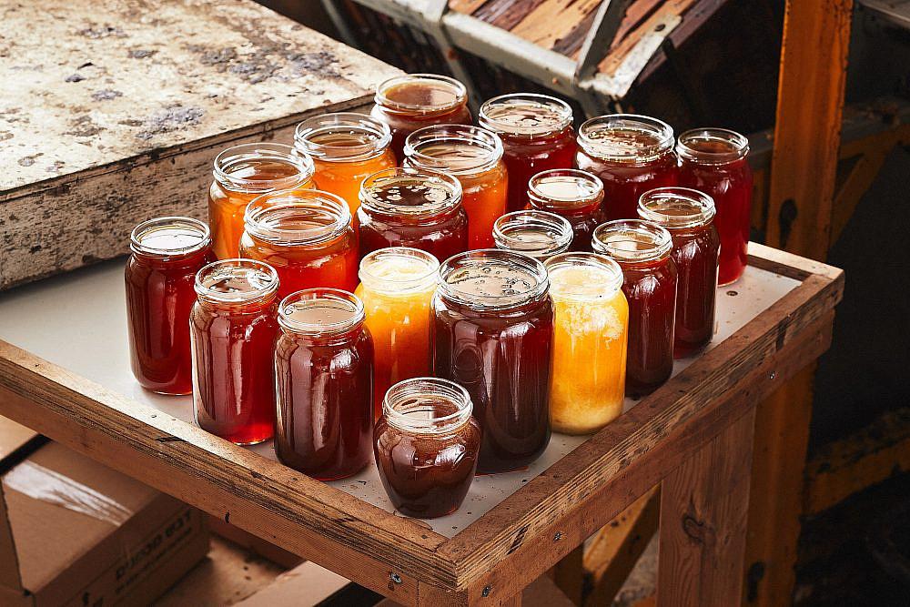 סוגי דבש עונתיים מהמגוון הביולוגי הצומח בגליל מכוורת מכמנים. צילום: מתן כץ