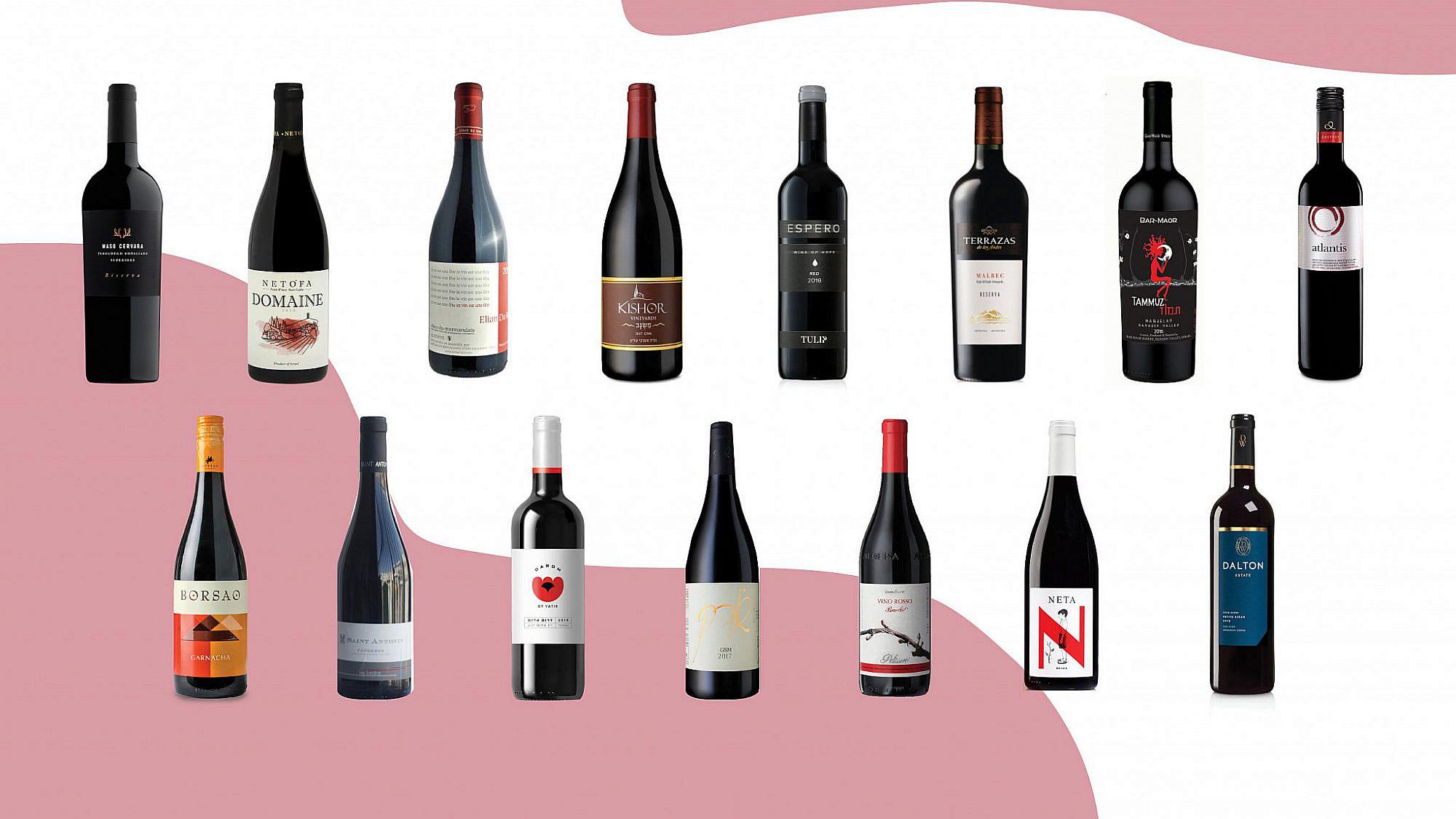 יינות אדומים מומלצים לחורף 21. אלונה פלוסקי