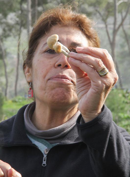 """קוראת לחינוך סביבתי ד""""ר דליה לוינסון (צילום: ענבל ענברי מלמד)"""