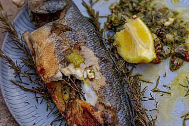 דג שלם מעושן עם עשבים של שף אוהד לוי   צילום: מידן גיל ארוש