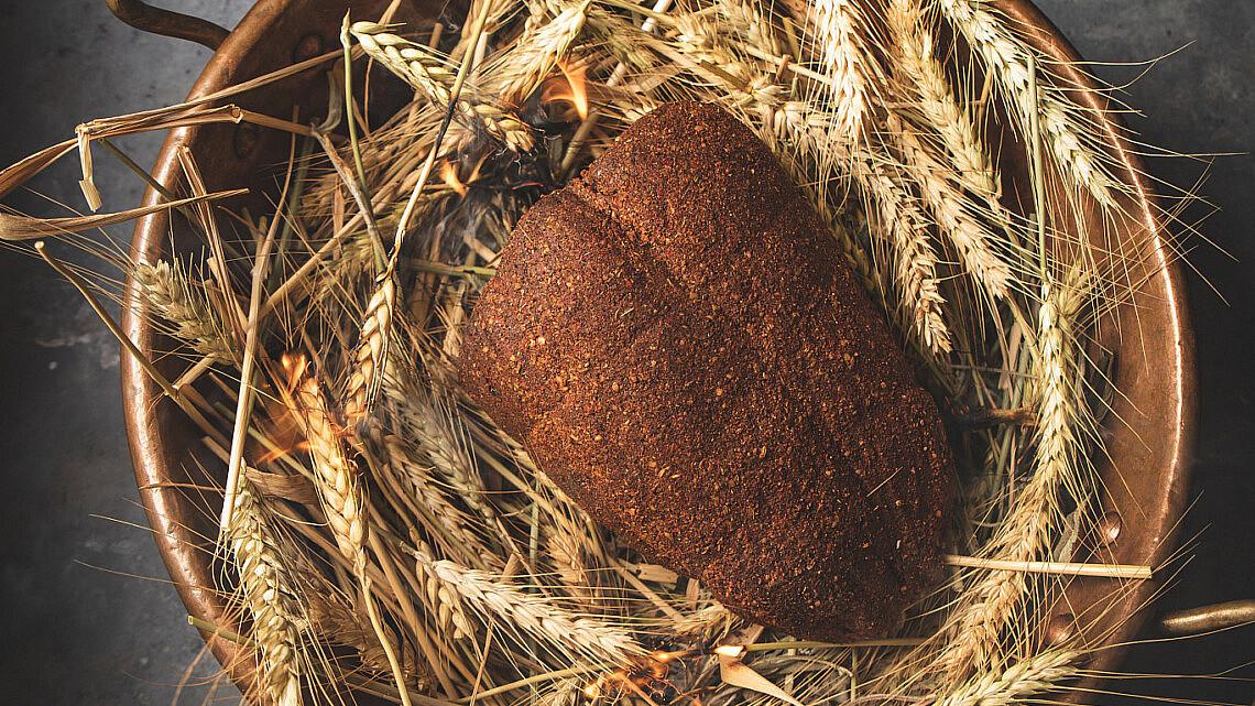 פסטרומה טונה של שף הלל תווקולי | צילום: שני בריל, סטיילינג: עינב רייכנר