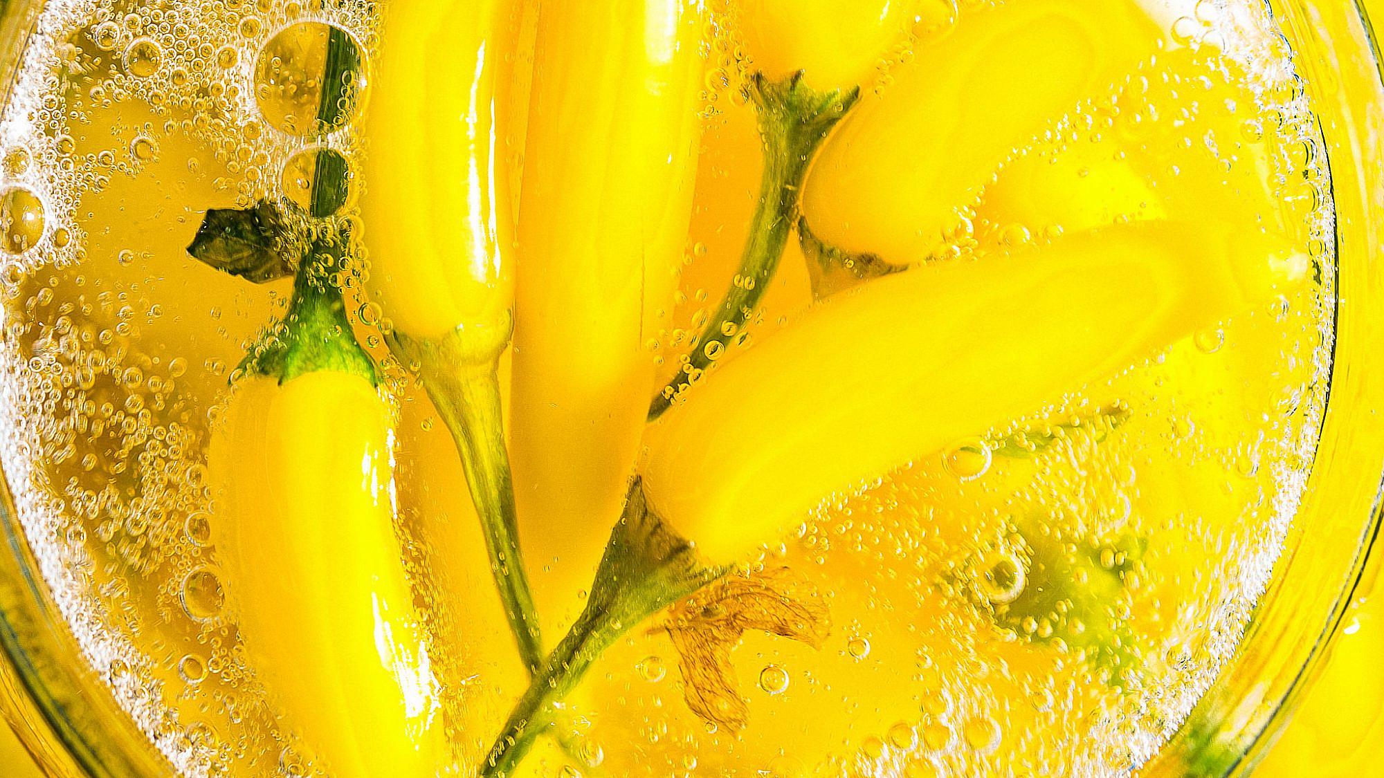 צ'ילי מותסס בתמיסת מלח של נועה לוי   צילום: מידן גיל ארוש, אסיסטנטית: ורד שובל