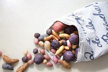 תפוחי אדמה . צילום: דן לב | סגנון: אוריה גבע