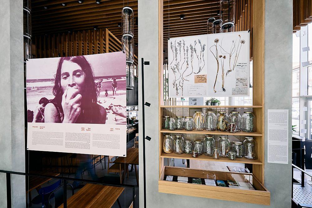 """עקרונות של קיימות ושמירה על הסביבה """"נחמה ריבלין – מטבח משלה"""", תערוכה באסיף. צילום: אמיר מנחם"""