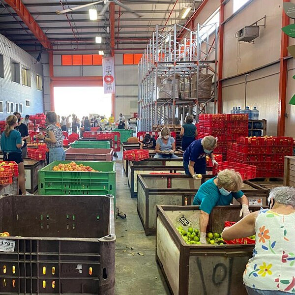 מצילים עודפי מזון. צילום באדיבות לקט ישראל